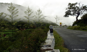 Bangalore to Ooty by Road